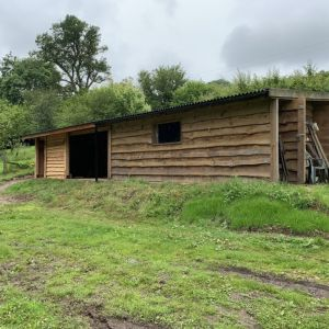 Rustic Shed Extension