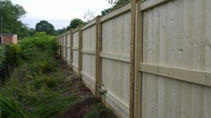 Back view of the garden fence