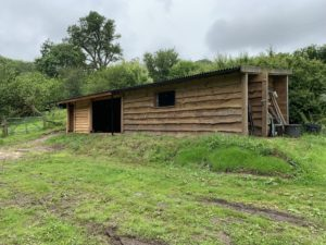 Shed Extension Waney Edge Cladding - The Wooden Workshop Devon
