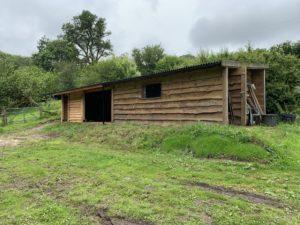 Shed Extension Waney Edge Cladding - The Wooden Workshop Devon